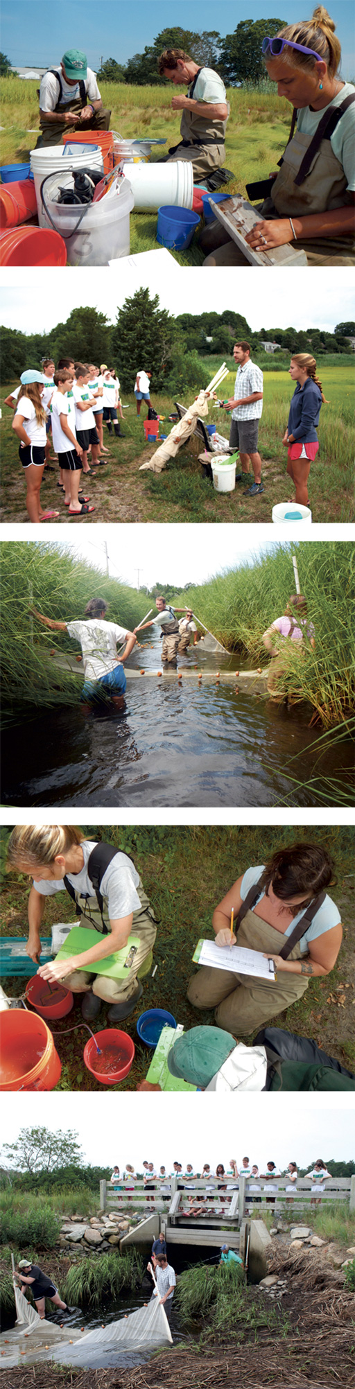 Hana-Zayatz---interns-marshwork-(Credit---APCC)